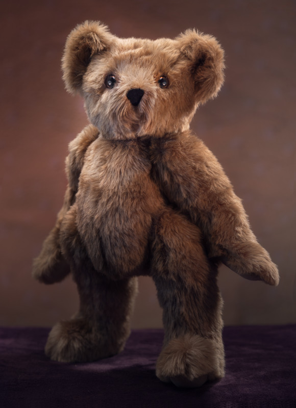 Portraits - Vermont Teddy Bear by Andy Bloxham